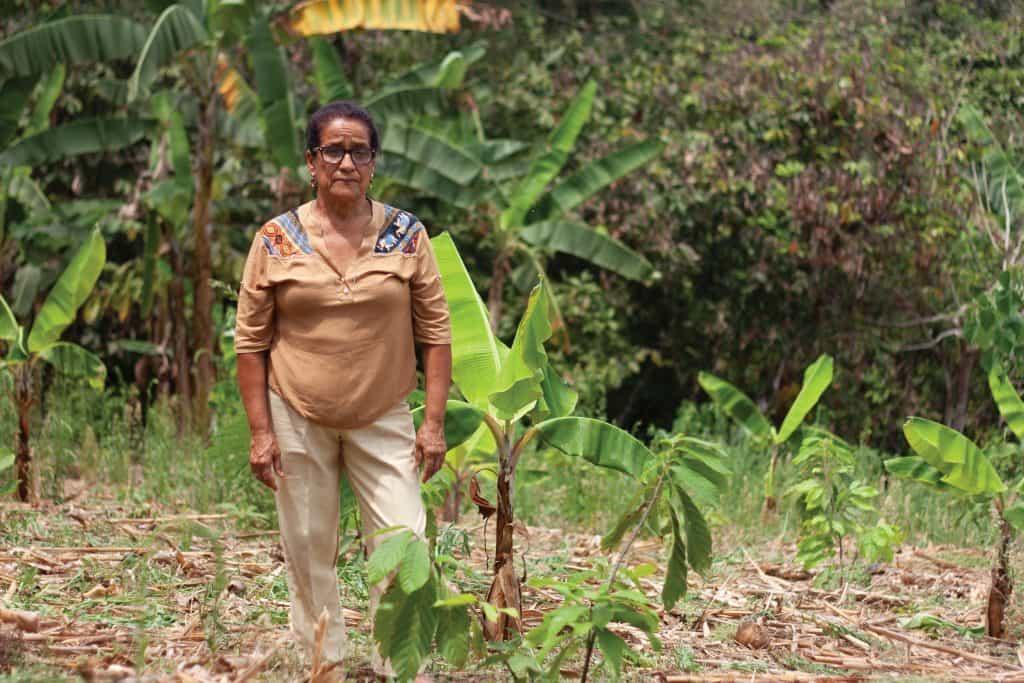 """UNOCACE Noticias - Leonor Aspiazu """"Para que el cacao nacional no se extinga"""""""